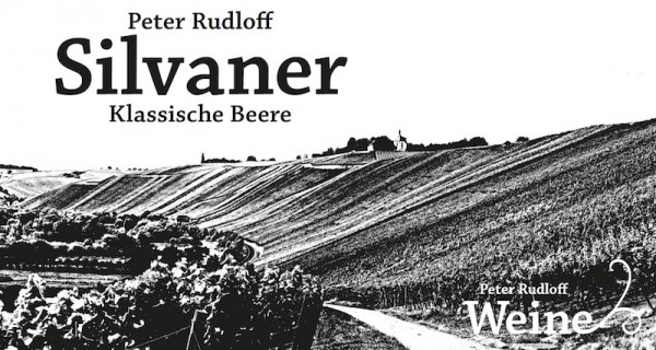 """Silvaner """"Klassische Beere"""""""