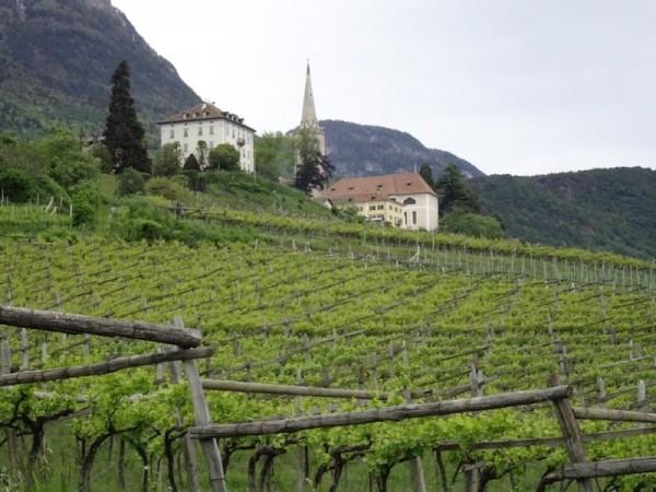 Die Weinkiste - Was kann Südtirol?